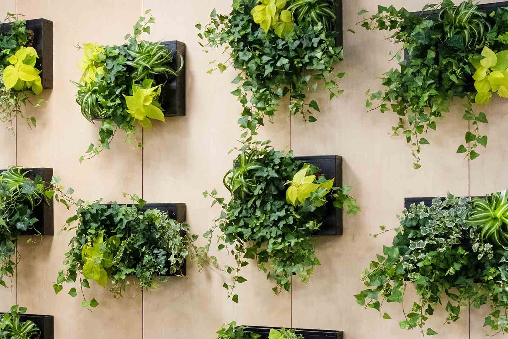 Bonn-Studio-Sein-Integreeritavad-lillepotid